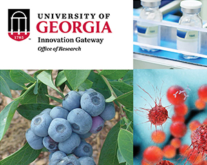 University of Georgia Innovation Gateway Brochure